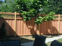 Spindle Top Fence w/ Cap