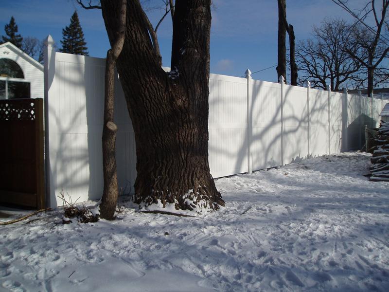 Fences MN