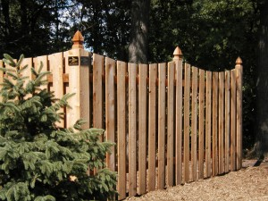 Fence MN