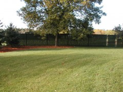 Black Vinyl Coated Chain Link Fence w/ Hedge Slat