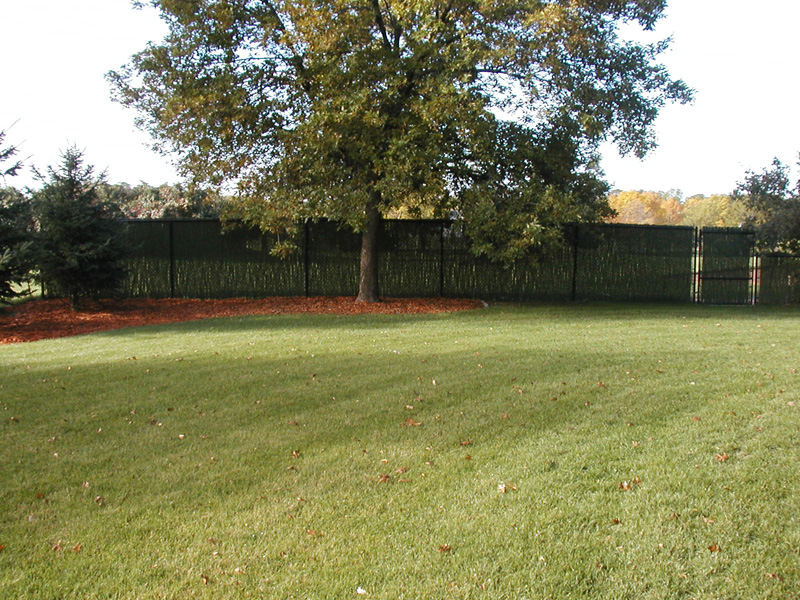 Vinyl Coated Chain Link Fence Photo Gallery Fence