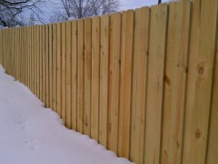 Green Treated Board on Board Fence Outside View