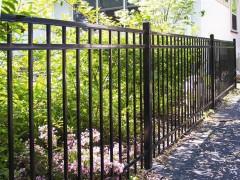 Majestic Montage Ornamental Fence