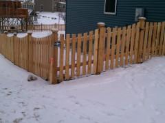 Cedar Scalloped Picket Fence