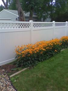 Fence Minnesota